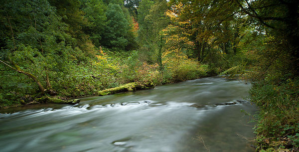 Autumn in Millers Dale, Derbyshire
