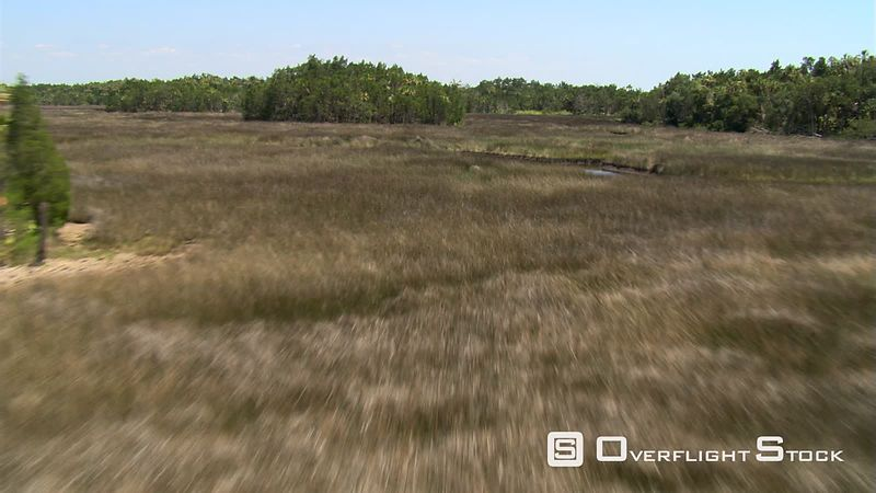 Flight over marshy grassland and trees to wide view of rural Florida landscape