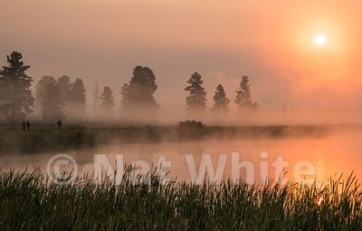 Wild_life_refuge-Montana_sunrise-RMSP_nat_wild_refuge_sunrise2017-494-August_07_2017