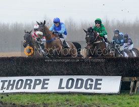 THE FLAME {Tommie O'Brien) - Midlands Area Club Point-to-point 2017, Thorpe Lodge 29/1