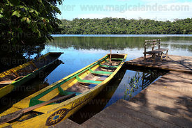Dugout canoe moored on Lake Chalalan , Madidi National Park , Bolivia