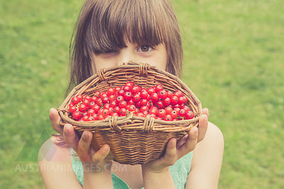 Little girl holding basket of red currants