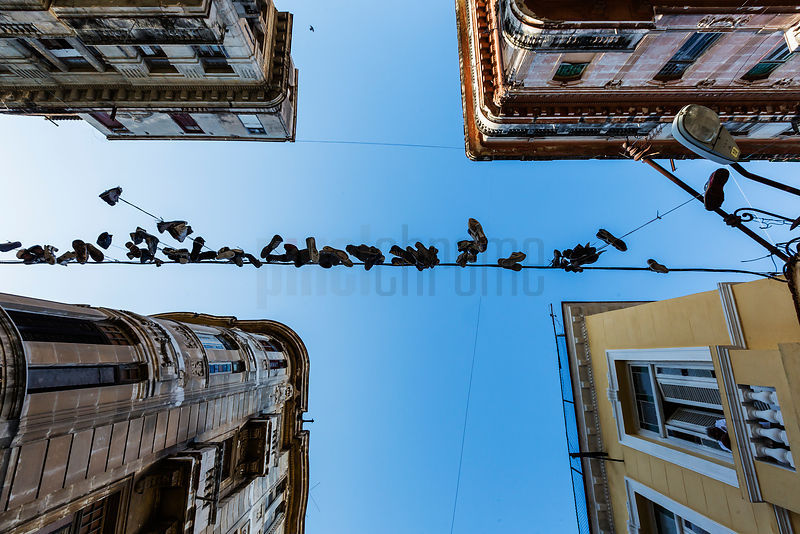 Shoes Hanging from a Power line in Havana Street