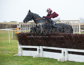 Briery Star (Hannah Watson) - Race 4 Ladies Open - Cottesmore Hunt Point to Point, Garthorpe 4/3/12