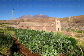 Old church, broad bean (Vicia faba, habas) field and Cerro Lejia volcano, Socaire, Region II, Chile