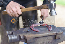 Farrier hammers a red hot horse shoe