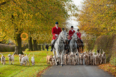 Cottesmore Hunt Opening Meet, Preston Lodge 30/10 photos