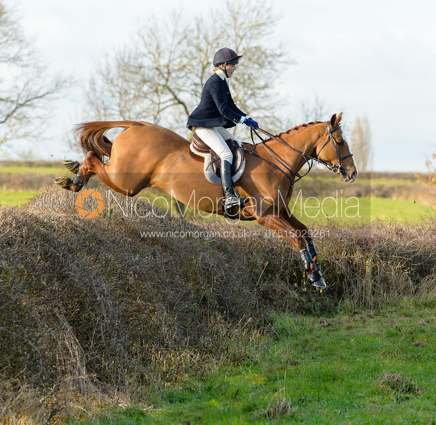 Katie Barber jumping a big hedge - The Quorn at Barrowcliffe Farm