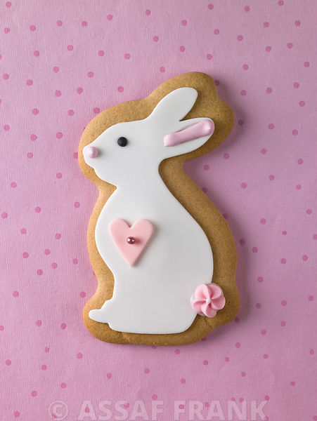 Gingerbread Bunny photos