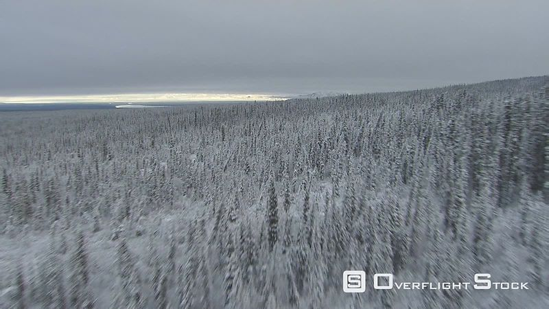 Flying over snowy forest in Alaska