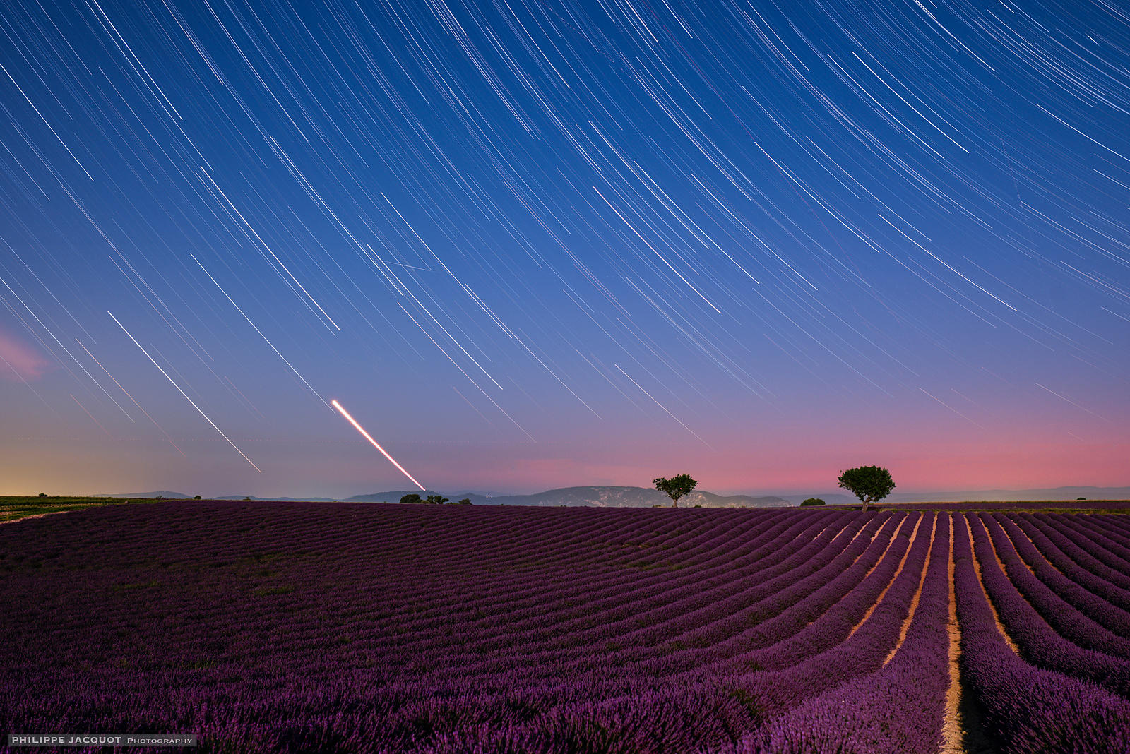 Venus set on Lavender - Valensole - Alpes Haute Provence