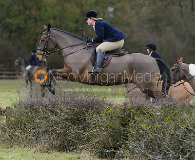 The Cottesmore Hunt at Town Park Farm 6/1 photos