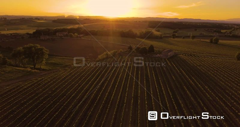 Aerial footage Vineyards on sunset in Tuscany, Italy, 4K