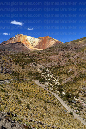 Dirt track in valley below Tunupa volcano, Oruro Department, Bolivia