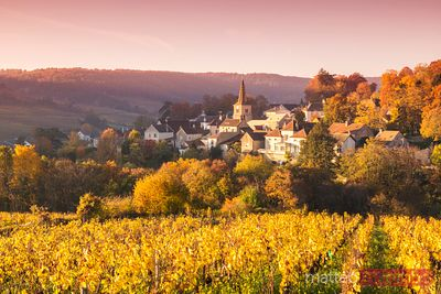 France - Burgundy images