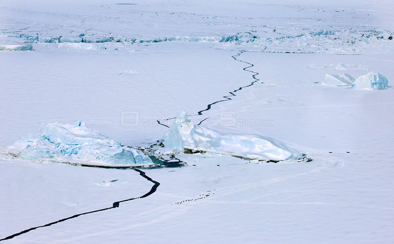 Aerial view of sea ice around Snow Hill Island, showing small group of Emperor Penguins (Aptenodytes forsteri) Antarctica, Novmeber
