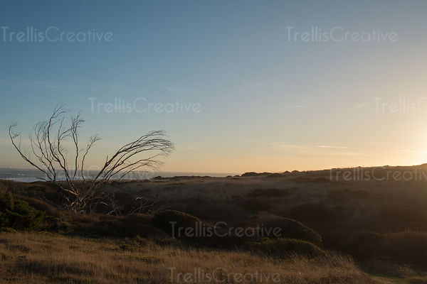 A distant view of the sea from a dry grass and rocky landscape