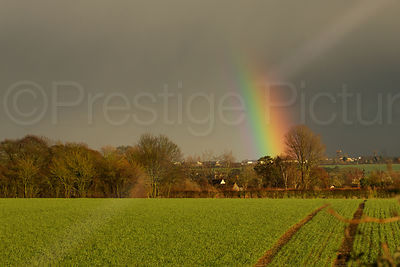Rainbow against a Dark Sky Looking Across a Green Field