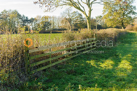 Fence 6 - options to right of white marker  (point 2 on map) including wired hedge in foreground, post or hunt jump alternative.