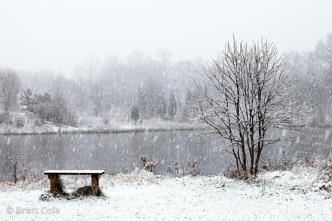 Beautiful snowy day in the seldom visited Green Farm Park, Montgomery County, Maryland