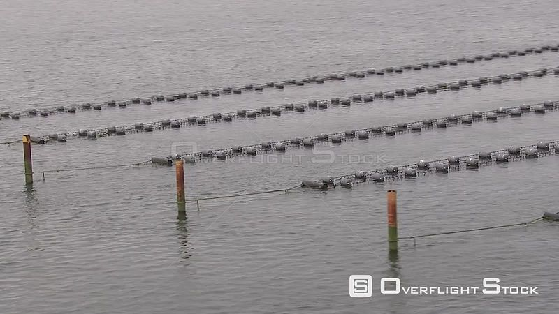 Aquaculture Netherlands