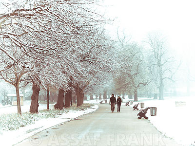 Man and woman walking on road in park at winter