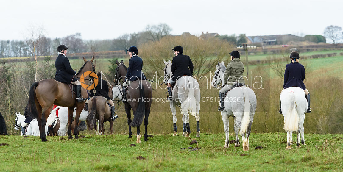 The Belvoir Hunt at Goadby Marwood 11/1