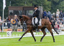 Bruce Davidson and PARK TRADER - dressage phase,  Land Rover Burghley Horse Trials, 6th September 2013.