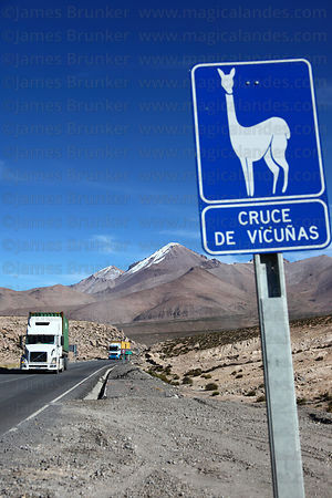 Vicuña crossing road sign next to Highway 11 , Lauca National Park , Region XV , Chile