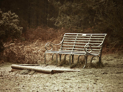 Empty bench in light snow