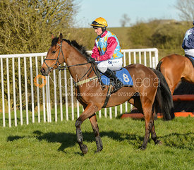Race 7 2m4f Maiden - The Belvoir Point-to-point 2017
