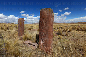 Figures on monoliths at Konko Wankani site near Jesús de Machaca, La Paz Department, Bolivia