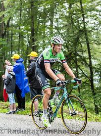 The Cyclist Lars Boom Climbing Col du Platzerwasel - Tour de France 2014
