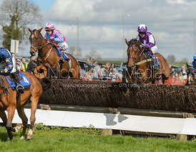 Race 2 PPORA Club Members - The Atherstone Point-to-point 2017