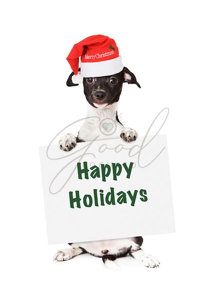 Santa Puppy With Happy Holidays Sign