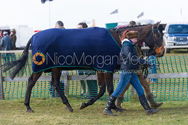 Race 2 (Members) - The Belvoir at Garthorpe 30th March 2013.