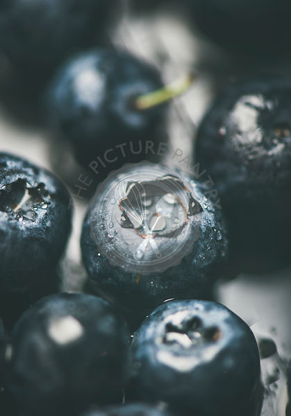 Fresh forest blueberry texture, wallpaper and background, vertical composition, close-up