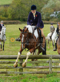 Debbie Barnes jumping a hunt jump - The Cottesmore Hunt at Somerby, 2-11-13