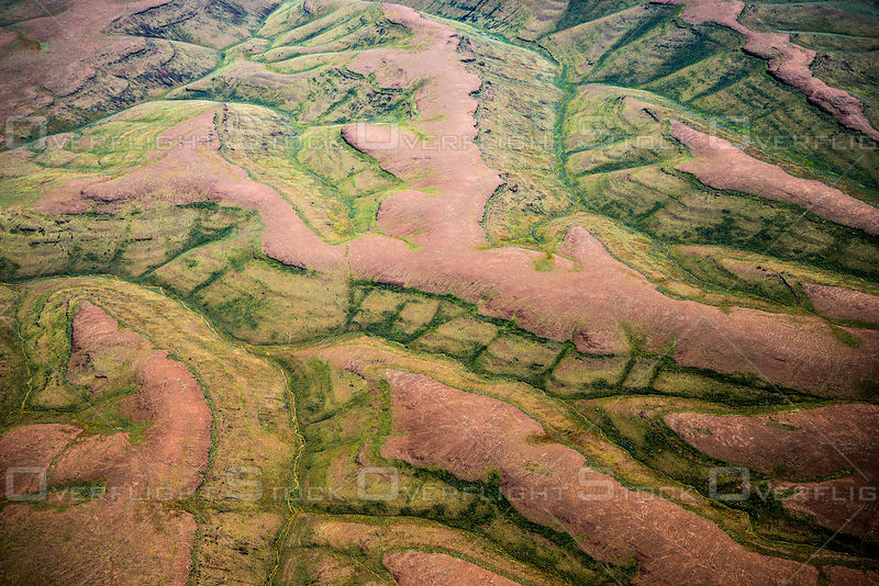 Red Ridges and Green Valleys Make a Geologic Pattern, Sierra Nevada Foothills, California.