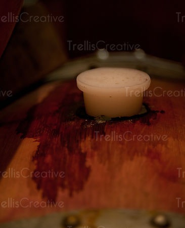 Close-up of a bung in a wine stained oak barrel in a winery cellar
