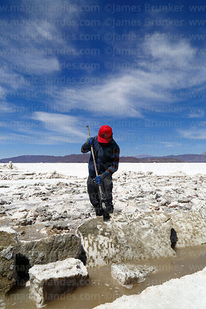 Salt worker scraping mud off a salt block, Salar de Coipasa, Oruro Department, Bolivia