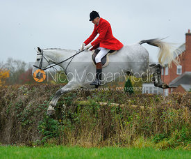 Joss Hanbury MFH jumping a hedge from the meet