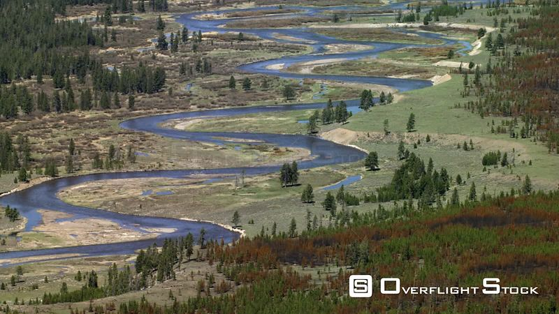The madison river winds through spring green meadows on the western edge of Yellowstone National Park