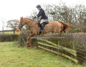jumping a hedge near the meet - The Belvoir Hunt at The Wolds Farm 3/12