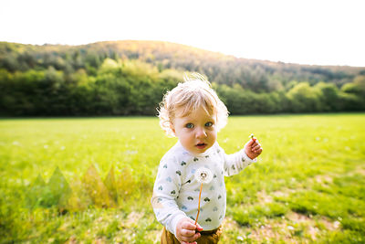 Cute little boy on meadow holding dandelion