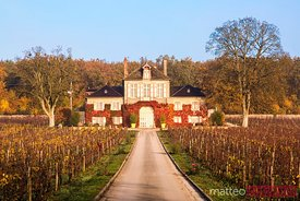 Domaine d'Ardhuy winery, Aloxe Corton, Burgundy, France