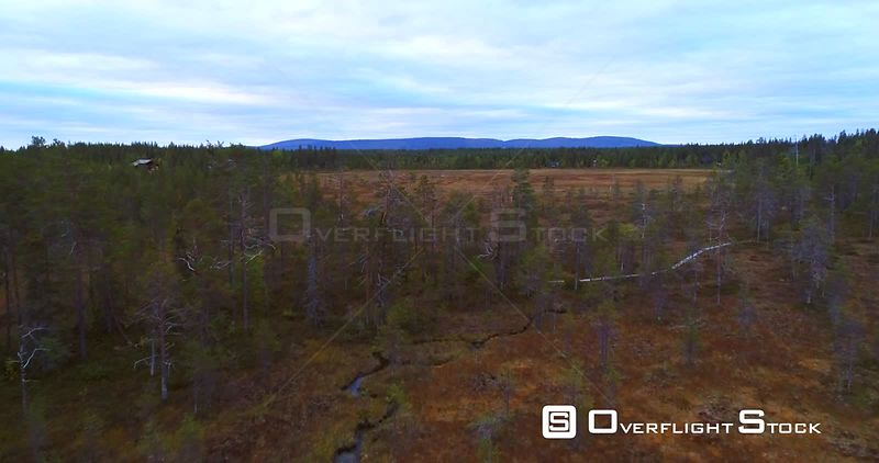 Swamp, Aerial View Over Trees on a Big Wet Bog, in Lapland Pyhaluosto National Park, on a Cloudy Autumn Day, in Lappi, Finland