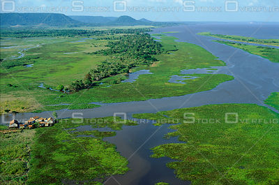 Amazon river: Islands and Farm Brazil