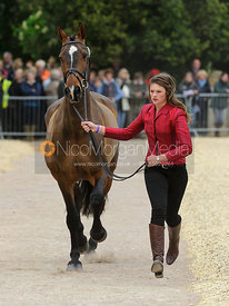 Sophie Jenman and GERONIMO - First Horse Inspection, Mitsubishi Motors Badminton Horse Trials 2014
