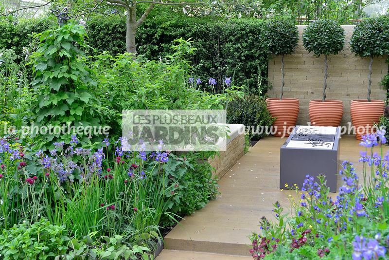 la phototh que les plus beaux jardins petit jardin urbain style champ tre contemporain au. Black Bedroom Furniture Sets. Home Design Ideas